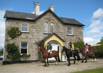 Horse Riding Ardmore House Kinnitty