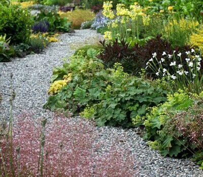 Clonohill Gardens